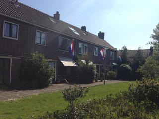 Amsterdam, Haarlem, beach, dunes! - Holland (Netherlands) vacation rentals
