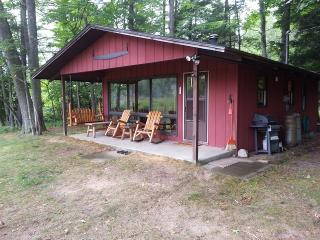 Relaxing Little Manistee River Cabin - Branch vacation rentals