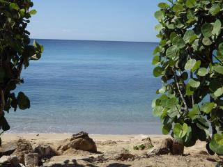 Fun in the Sun, Beach, & Pool...  @Your Doorstep! - Rincon vacation rentals