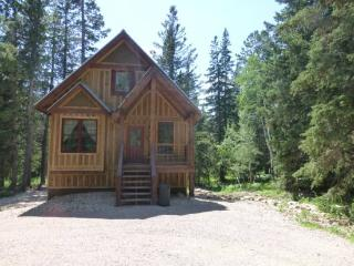 Snowed Inn Cabin - Lead vacation rentals