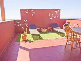 Winter in the sun & private terrace - Malaga City - Malaga vacation rentals