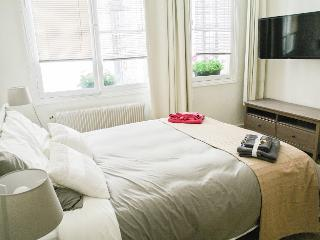 Notre Dame Vacation Rental by the Seine River Bank - Paris vacation rentals