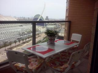 CITY´S ARTS & SCIENCIES & HISTORICAL CENTER CLOSE - Valencia Province vacation rentals