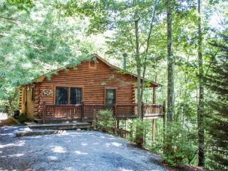 MOUNTAIN HEAVEN*{ONLY $99/NIGHT!}~ 2BR~1BA~KING BED IN MASTER~PRIVATE ROMANTIC SETTING~DESIGNER FURNISHINGS~WIFI~GAS LOG FIREPLA - Cherry Log vacation rentals