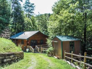 TUCKED AWAY- 2BR/1BA WOODED CABIN, CLOSE TO TOWN, WOODBURNING FIREPLACE, CABLE TV, PET FRIENDLY, ONLY $85/NIGHT! - North Georgia Mountains vacation rentals