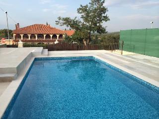Villa In Rovinjsko Selo With Pool - Rovinj vacation rentals