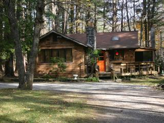 Kate's Lazy Cabin on Mink Hollow Road in Woodstock - Lake Hill vacation rentals