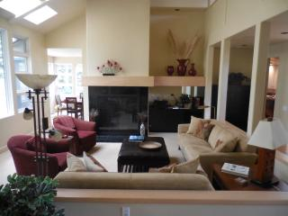 Spectacular Large Contemporary Home in Sun Valley - Sun Valley vacation rentals