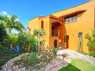 Beaches Ocean View Mountain Top Infinity Pool  (J) - Las Terrenas vacation rentals