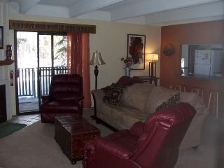 Hideaway in the heart of Frisco-WiFi, pool, sauna, hot tub - Summit County Colorado vacation rentals