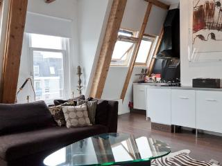 Stylish central loft with large terrace, fireplace. - Haarlem vacation rentals
