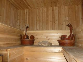 SPACIOUS  HOUSE with WOOD-FIRED SAUNA in by owner! - Liberty vacation rentals