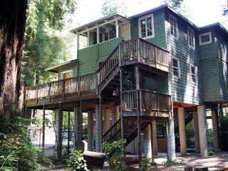 Monte Rio Treehouse - Monte Rio vacation rentals