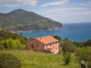 Le Lagore - La Spezia vacation rentals