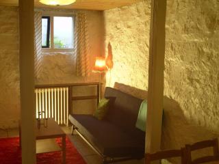 Cosy down-town apartment in Reykjavik - Reykjavik vacation rentals