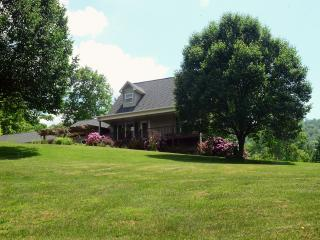 Quiet country setting just minutes from Asheville - Weaverville vacation rentals