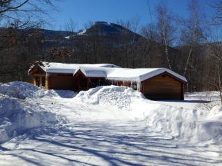 Expanded Cabin facing Hunter Mountain in NY - Catskills vacation rentals