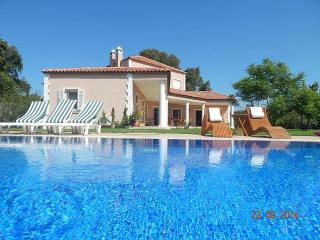 VIP Plantation House - Derekoy vacation rentals