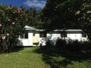 Rain Forrest Dream Cottage - Hilo vacation rentals