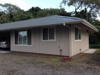 In Hilo Town Very Convenient! - Hilo vacation rentals