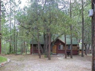 An Oak 11 ~ RA55136 - Big Bear Lake vacation rentals