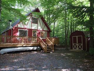 COZY & CHARMING POCONO CABIN NESTLED IN THE WOODS. - White Haven vacation rentals