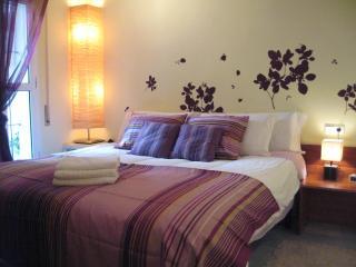 2-4 Guest Impeccable Apt. WiFi, AC. Prime Location - Seville vacation rentals