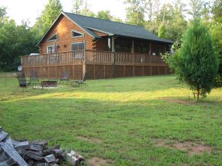 LUXE Cabin Less Then 3 Miles To Tryon Equestrian - Mill Spring vacation rentals