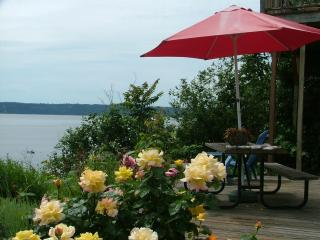 180* view waterfront with  Mt. Rainier & Olympics - Puget Sound vacation rentals