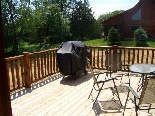 Luxury 3.5BR Log House - Near Lake Galena - Galena vacation rentals
