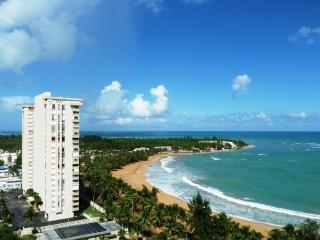 Beach Front Apartment Direct Access to the Beach - Ceiba vacation rentals