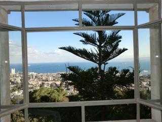 Mount  Carmel, adjacent to the Bahai Gardens - Haifa vacation rentals