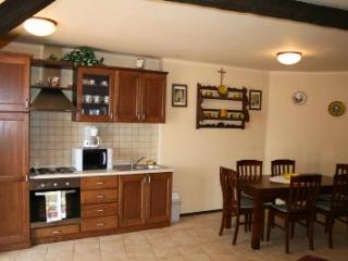 PAULA CENTAR(120-239) - Draga Bascanska vacation rentals