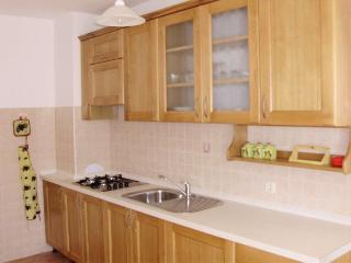 ANTOLOVIC DANIC(133-297) - Sveti Lovrec vacation rentals