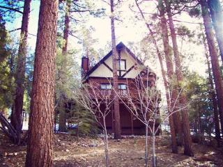Wishing Bear Lodge ~ RA45453 - Big Bear City vacation rentals