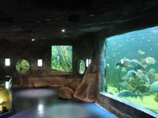 Natura Resort Pescalis - Moutiers-sous-Chantemerle vacation rentals