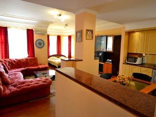 348, 2 Zolotovoritska, Center, for Groups - Kiev vacation rentals