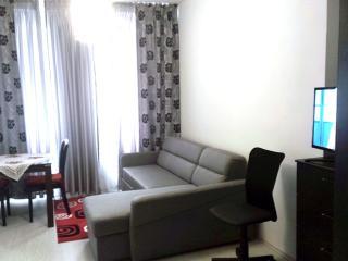 Apartment Karlovy Vary - Loucna pod Klinovcem vacation rentals