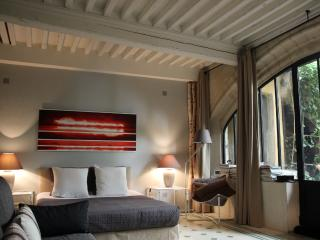Avignon's heart at the foot of Palais des Papes. - Avignon vacation rentals