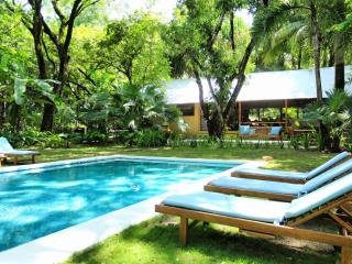 The Milarepa 3 acres pristine beachfront property - Santa Teresa vacation rentals