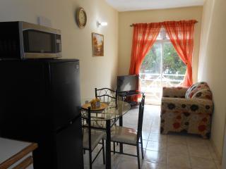 Serene One Bedroom Apartment - Kingston vacation rentals