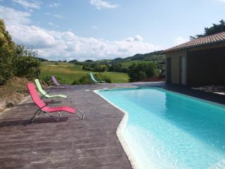 Close to Mirepoix, in the South of France,enjoy - Moussoulens vacation rentals