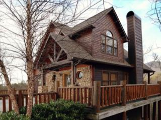 Not too small; just right with our Beary Cozy three bedroom cabin - Maryville vacation rentals