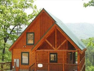 Panoramic Views, Regal Stacked Fireplace, Pool Table, BBQ Grill, Hot Tub - Sevier County vacation rentals