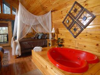 Naughty by Nature a one bedroom condo - Pigeon Forge vacation rentals