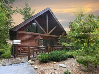 Starry Night a one bedroom cabin - Wears Valley vacation rentals
