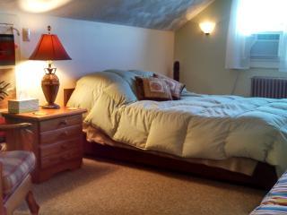 Sweet lovely efficiency 'The Nook' Saranac Lake - Saranac Lake vacation rentals