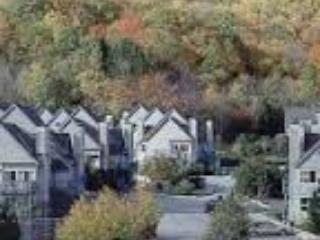 Mountainside 2-Story; Kitchen, 2 beds / full baths - Blue Mountains vacation rentals
