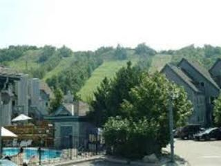 Exterior - Mountain Springs Resort condo - Mountainside 2-Story; Kitchen, 2 beds / full baths - Blue Mountains - rentals