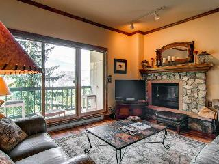 Borders Lodge - Lower 113 - Beaver Creek vacation rentals